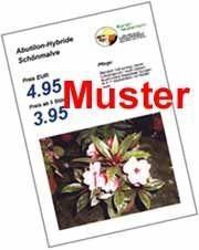 Maxi-Plakate Folien A4 - weiß, matt, 120 µ